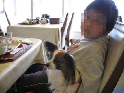2009_0322_084316AA.jpg