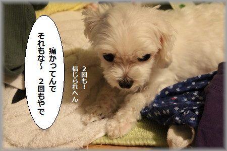 11.7.9ばーん ②