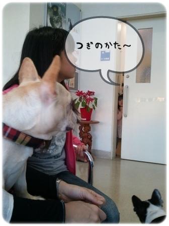 2011-02-26_16_43_16.jpg