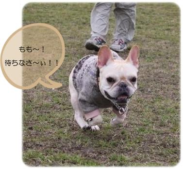 IMG_5906.jpg
