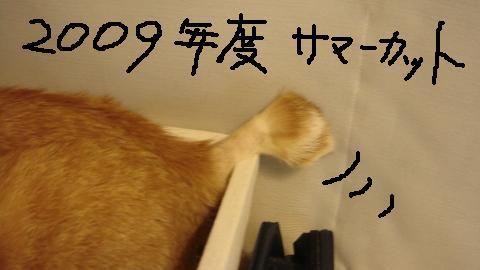 最終手段 (10)