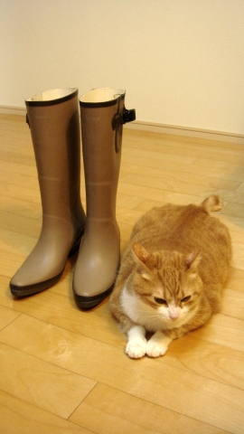 長靴と猫1