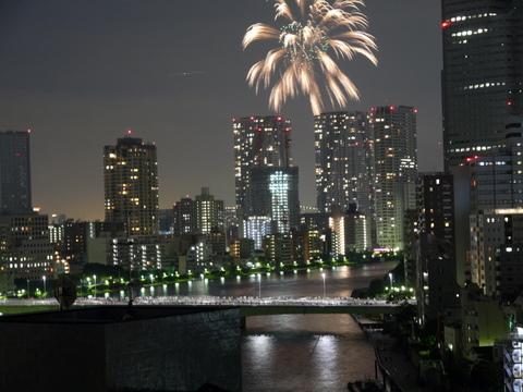 大華火祭 (6)