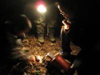 夜の森へ確かめに。