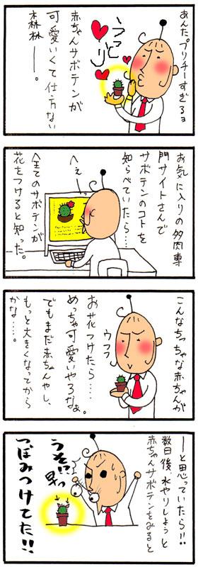 bl03171.jpg