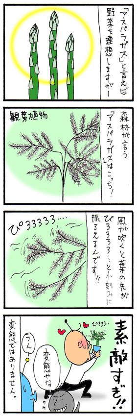 bl07061.jpg