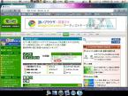 Ubuntu 9.04/Google Chrome