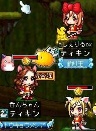 Maple100109_214248.jpg