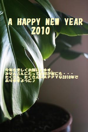 2010年あけましておめでとうございます