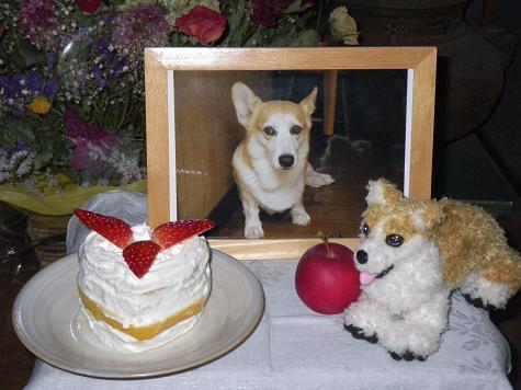 11/25れいとケーキ