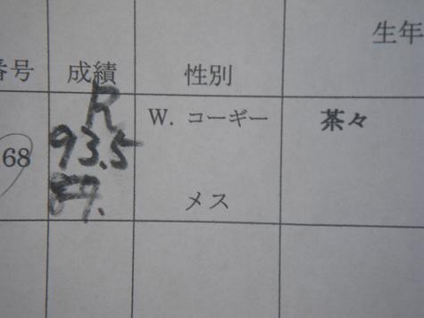 11/30PD広島成績1
