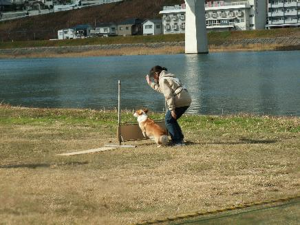 PD広島11/30 002