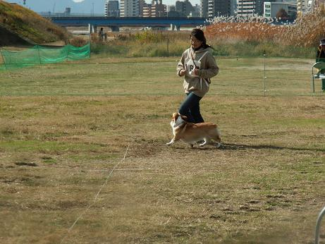 PD広島11/30 006