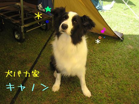 2009.8.1広島帝釈峡大会19
