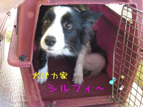 2009.8.1広島帝釈峡大会22