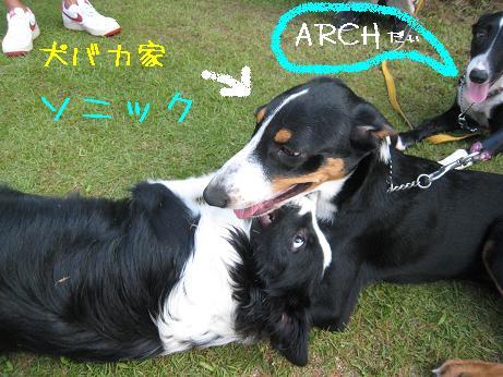 2009.8.1広島帝釈峡大会21