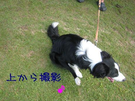 2009.8.1広島帝釈峡大会29