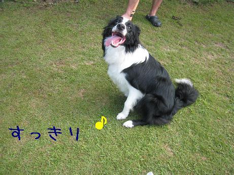 2009.8.1広島帝釈峡大会30