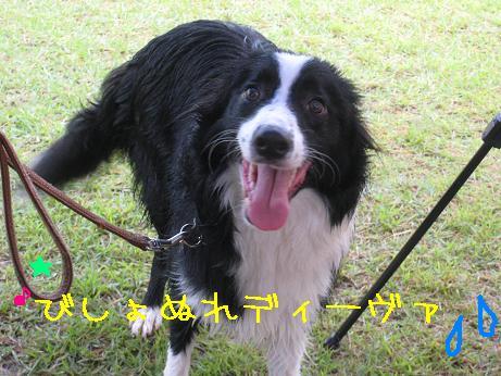 2009.8.9岡山蒜山Ⅰ