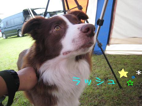 2009.8.9岡山蒜山Ⅱ
