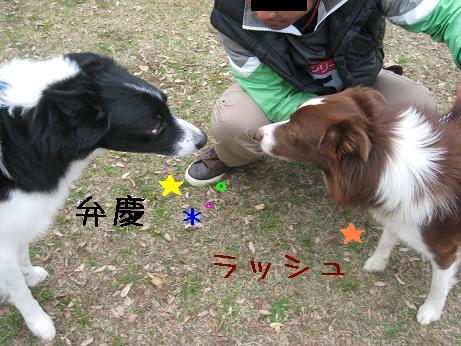 弁慶とその息子