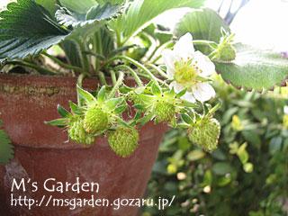 2009-04-12-03.jpg
