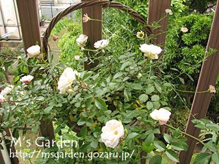 2009-05-18-02.jpg