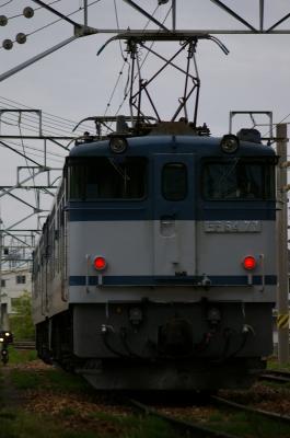 IMGP1862.jpg
