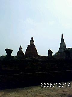 PA0_0115_20081127060524.jpg
