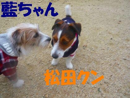 藍ちゃん&松田クン