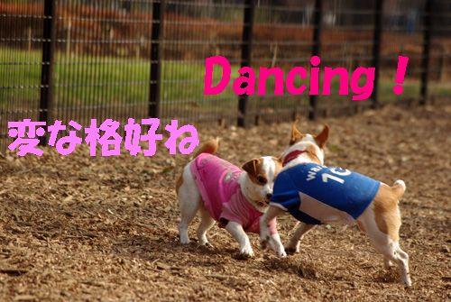 ダンス教室?