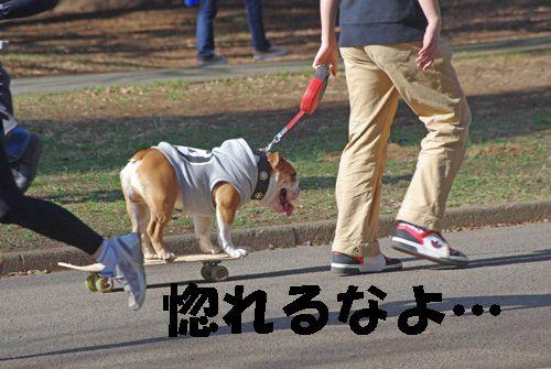 ココは渋谷区