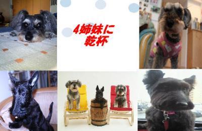 syuna_convert_20110327161907.jpg