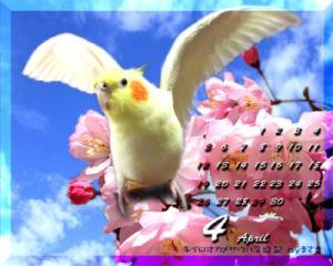 calendar-2009apr-1.jpg