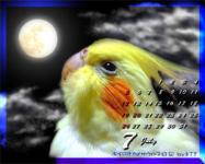 calendar-2009jul-1.jpg