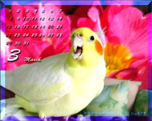 calendar-2009mar-1.jpg