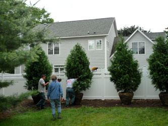 treeinstallation_090619_03_250