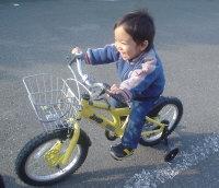 自転車の 自転車 ジープ 16インチ : ... 自転車】JEEP(ジープ)16インチ