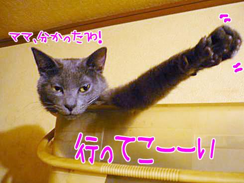 05_0223ゆきじ02