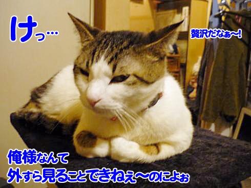 01_0223マニー