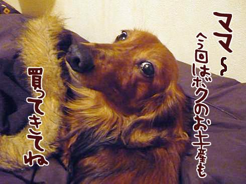 03_0223ネスケ