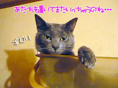 04_0223ゆきじ01