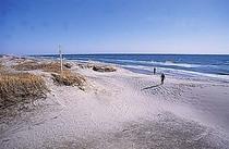 海岸22447ab2050140954_1[1]