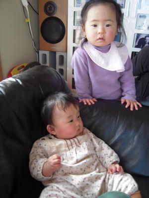DSCN4391_convert_20100131180211.jpg