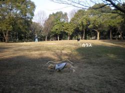 20100131-11.jpg