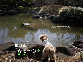 20100207-3.jpg