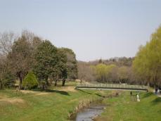 野川公園11