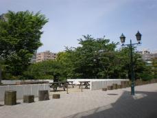 浜町公園2