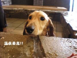 温泉最高♪