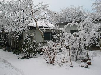 02-16 雪景色02